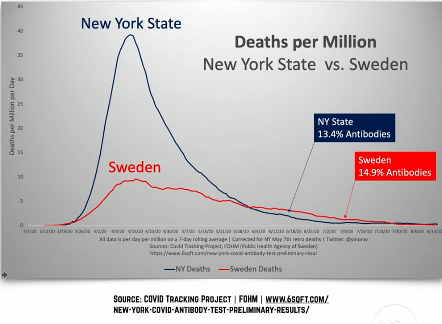 Yinon herd immunity comparison NY and Swedes